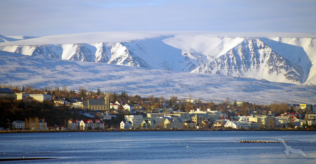 abenteuer arktis island spitzbergen norwegen kreuzfahrt mit albatros. Black Bedroom Furniture Sets. Home Design Ideas