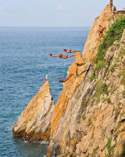 Elch springt von klippe